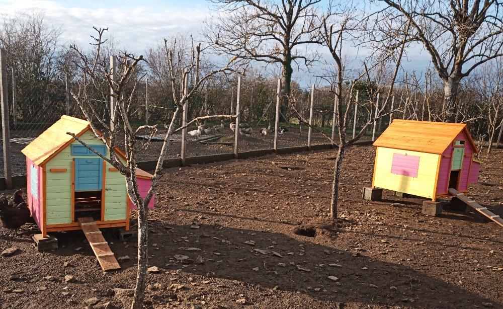 Aire camping-car à Cisternes-la-Forêt (63740) - Photo 7